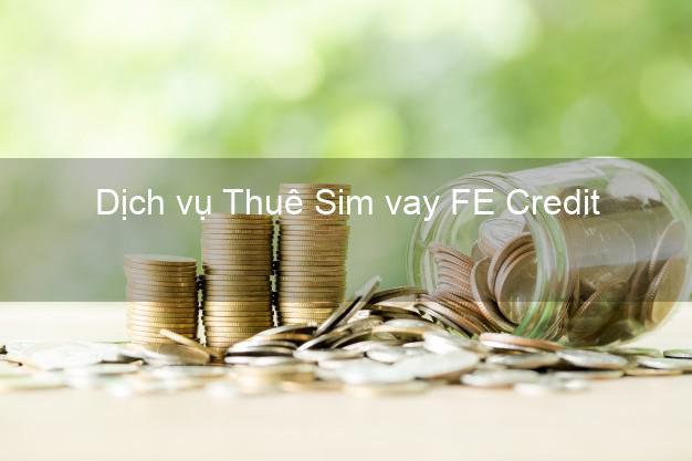 Dịch vụ Thuê Sim vay FE Credit