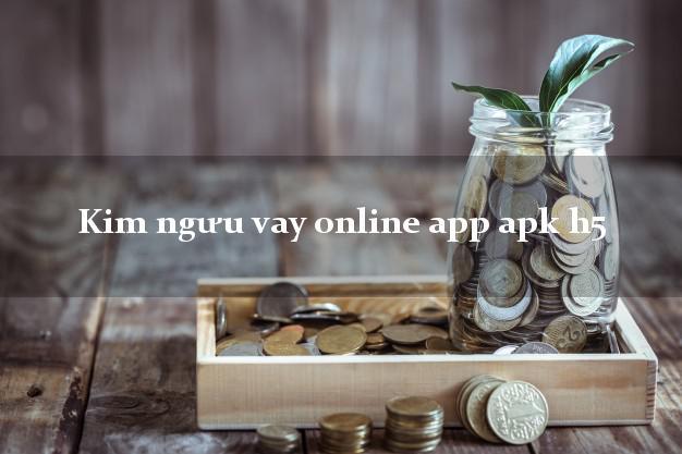 Kim ngưu vay online app apk h5